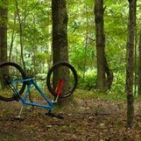 Woods on Nashua River  Lancaster Ma., Саут-Ланкастер