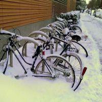 Snow, Сомервилл