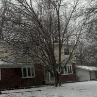 Tree Trimming Brooklyn Park MN, Бруклин-Парк