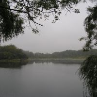 Empire Lake, Foggy Morning Calm, Whitetail Park, Дакота