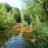 Flooded Driveways, Медисин-Лейк