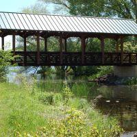 Foot Bridge At Medicine Lake, Медисин-Лейк