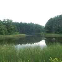 Minnetonka Woods, Миннетонка
