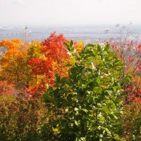 Duluth Colors looking at the Bong Bridge, Проктор