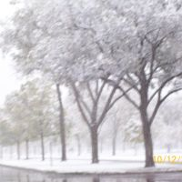 First snow, 2009, Victory Memorial Drive, Роббинсдейл