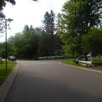 Forest Road, Сент-Луис-Парк