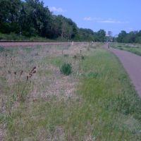 Cedar Lake meadow in May, Сент-Луис-Парк