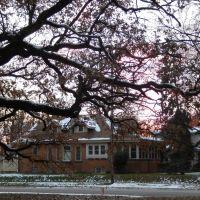 Oak Tree, Сент-Луис-Парк