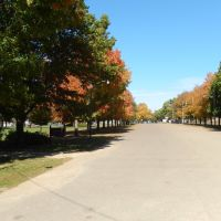 Nice Tree Lined Parkway, Фармингтон