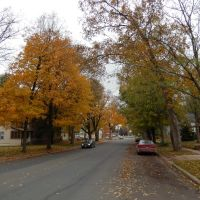 A Quiet Farmington Street, Фармингтон