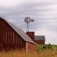 Windmill Study II, Хока