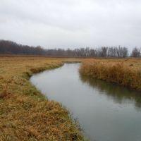 Upper Mississippi River Wetlands, Хока