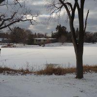 Frozen Creek, Эдина