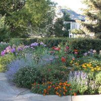 Edina Curbside Garden, Эдина