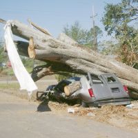 Bogalusa, LA (Crushed Van), Бассфилд