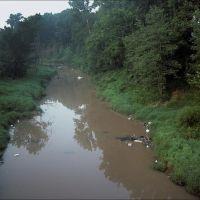 Muddy river - 199507LJW, Бассфилд