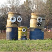 Roadside art - Minions, Вейр