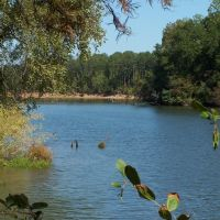 Tennessee-Tombigbee Waterway at Bartons Ferry, Вейр