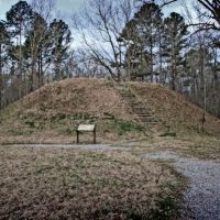 Owl Creek Indian Mounds - ca.1000-1500 A.D., Вейр