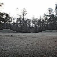 Bynum Indian Mounds - ca.100 B.C.-100 A.D., Вейр