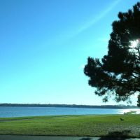 A nice day in Old Trace Park, 里奇兰密西西比州 39157 USA, Вейр