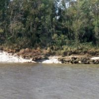 Tsunami layer at Moscow landing Tombigbee river, Вест Поинт