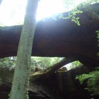 Natural Bridge, Alabama, Гаттман