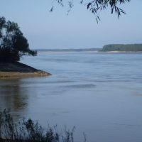 Confluence Of The St. Francis & Mississippi Rivers, Глендора