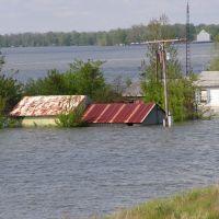 Flood of 2008, Greenville MS, Гринвилл