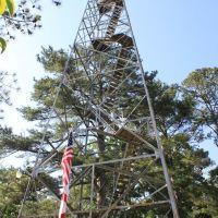 Carrollton Fire Tower, Каледониа