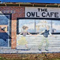"""The Owl Cafe"" Mural, Клинтон"