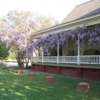 Wisteria Graces a Columbus Home, Колумбус