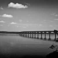 The Natchez Trace Bridge over the Tennessee River, Коссут