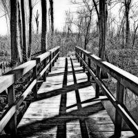 Cole Creek Swamp, Моунд Бэйоу