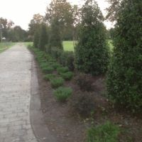 Landscapers Gulfport MS, Норт Гулфпорт