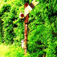 Odd Semaphore, Нью-Олбани