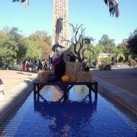 Halloween at Memphis Zoo, Олив Бранч