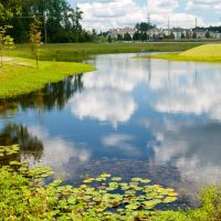 Nonconnah Greenbelt Park Lake, Олив Бранч