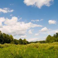 Nonconnah Greenbelt Park, Олив Бранч