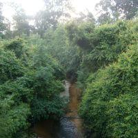 Greens Creek, Петал