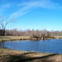 Pond, Пикэйун