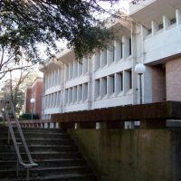 Millsaps College, Пурвис