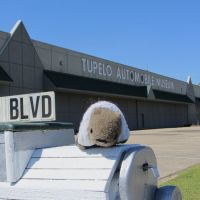 Willy Wombat visits the automobile museum in Tupelo, MS., Тупело