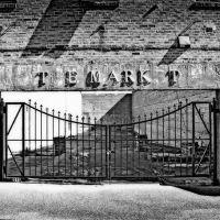 The Market, Тутвилер