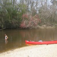 Canoeing the Black River, Флаууд
