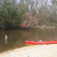 Canoeing the Black River, Флоренк