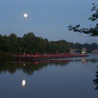 Moonlight Over the Tombigbee (2009-06-06 2016 02), Хикори