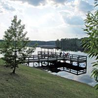 Washington County State Public Lake near Millry, AL, Хикори