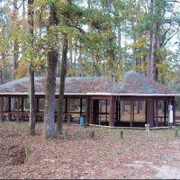 Blandon Springs State Park, Choctaw County, Alabama, Хикори