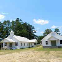 Three Forks Baptist Church ~ Bigbee ~ Washington County ~ Alabama, Хикори